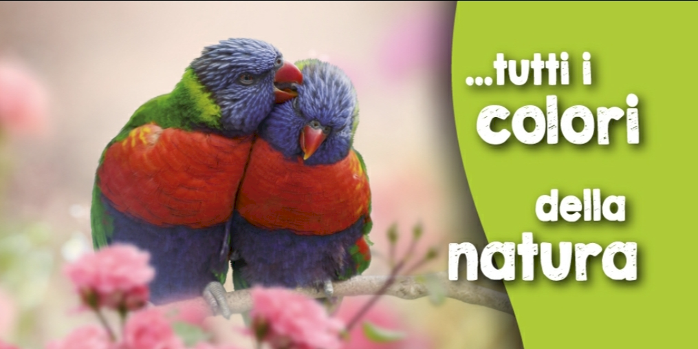 header image Naturalandia, tutto per animali